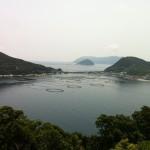 四国にも綺麗な海と珊瑚礁!ダイビングのメッカとしても知られる高知県柏島を紹介