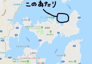 能登島イルカ