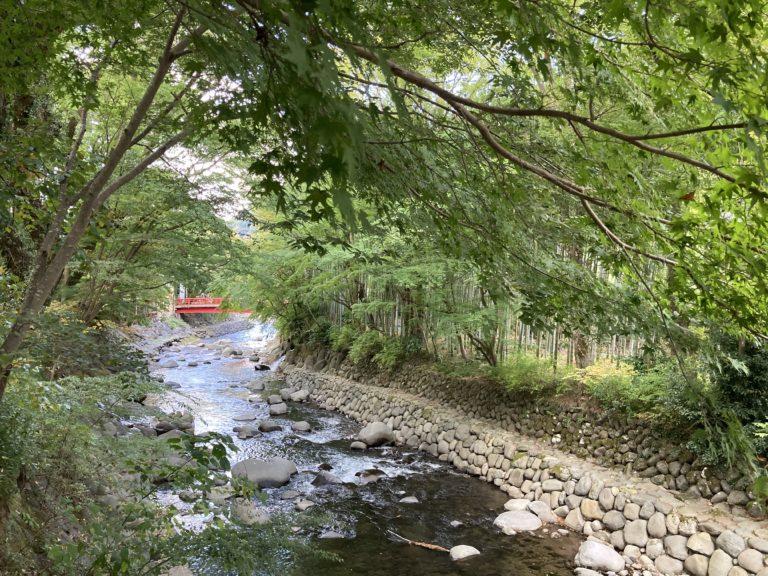 修禅寺桂川と竹林の風景